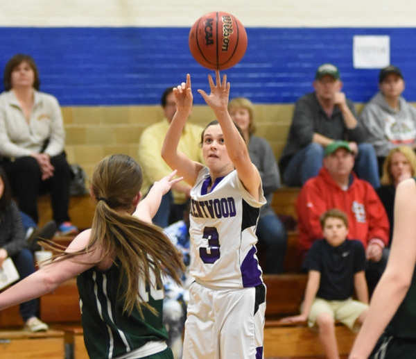 Logan Darrow shoots from the outside.