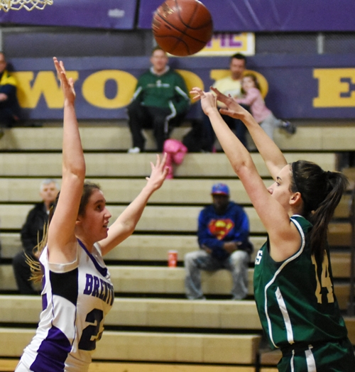 Gabby Gombas defends against a Bayless player.
